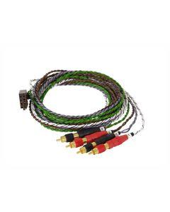 Rainbow ISO-RCA 4-kanavainen 2m